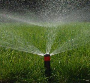 Irrigation-300×278